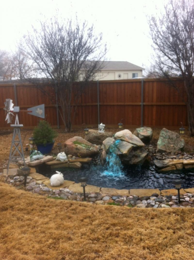 Built Pond for Client